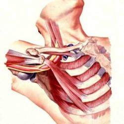 Zespół górnego otworu klatki piersiowej TOS