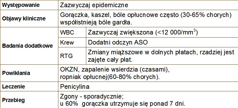 Bakterie G(+)   Streptococcus pyogenes
