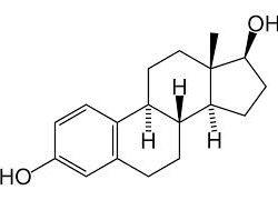 estrogeny