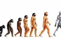 ewolucja człowieka