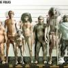rasy ludzkie